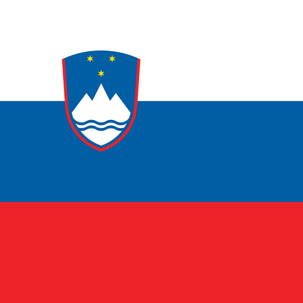 slovenia-flag-square-medium